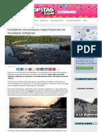 Científicos Encontraron Súper Bacterias en Las Playas Olímpicas _ Sopitas