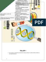 Taller 1 organizacion empresarial