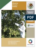 ManualdeProcedimientosmuestreoplaguicidas18enero20131