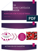 AGREGACION-PLAQUETARIA.pptx