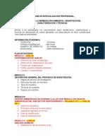 Diplomado Gestión de La Remediación Ambiental