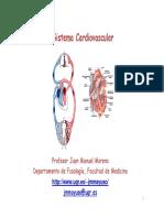 Sistema Cardiovascular I