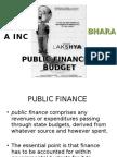 PUBLIC FINANCE & BUDGET