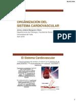 1. Organizanción Del Sistema Cardiovascular 2016