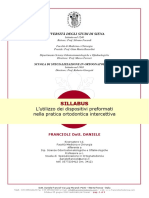 4_sillabus_dott._francioli_