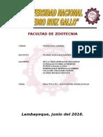 Facultad de Zootecnia Caratulas