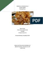 NUR ANGGA ROMANIAR.pdf
