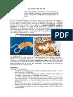 H. pylori (1)