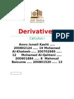 101- Full Derivative Report