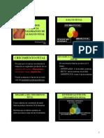 Evaluacion de La Salud Fetal2015 (2)