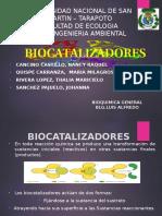 BIOCATALIZADORES PPT