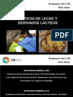 Presentacion Estrategias Ica 2010