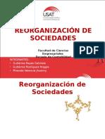 Reorganizacion