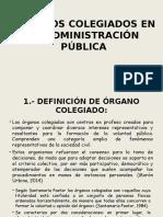Órganos Colegiados en La Administración Pública