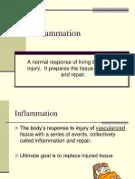 2011Inflammation.pdf