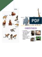 Animales Carnnivoros Hervivoros Ominivoros