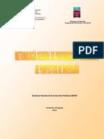 Guía General de PPIs - Paraguay
