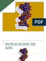 ADN 3.ppt