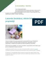Lista de Beneficii Ale Lavandei
