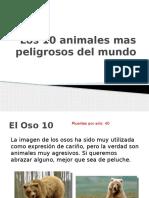 Los 10 animales mas peligrosos del mundo.pptx