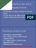 Fisiologia Del a. Reprod. V