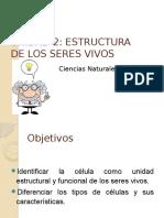 Ppt Estructura de Los Seres Vivos 5to.