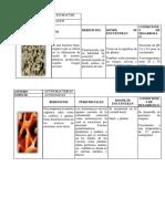 album bacterias.pdf