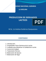 Producción de Derivados Lácteos