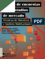Estudio de Mercado - Diseño de Encuetas Para Estudios de Mercado, Tecnicas de Muestreo y Analisis Multivariante
