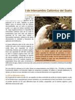 09. La CIC del Suelo.pdf