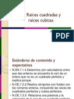raices 7.pdf