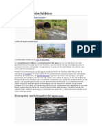 Contaminación hídrica1