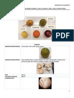 Practica1_DescripciónMorfologicayBotanica 2.pdf