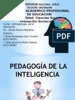 pedagogia de la inteligencia.pptx