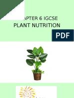 plant nutrition Igcse