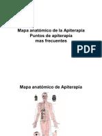49618216-Mapa-anatomico-de-la-Apiterapia.pdf