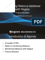 Netezza Database
