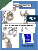 Sustavna Anatomija Covjeka - Skripta Za