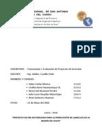 Proyecto de Prefactibilidad Para La Produccion de Ladrillos en La Region de Cusco