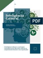 Inteligência Cultural Jorge Inês