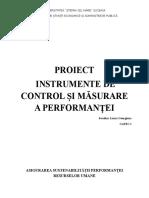 Proiect instrumente