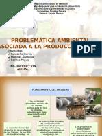 Produccion Animal