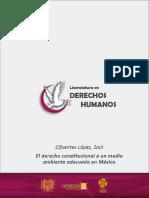 derechoconstitucional_s2a1.pdf