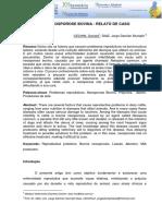 vet - aborto - reprodução - NEOSPOROSE BOVINA.PDF