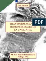 Transformaciones Hidrotermales de La Caolinita