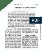 Biosintesis de Fosfomicina