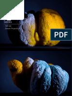 LensMagazine 21.pdf