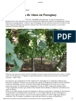 vinos en paraguay