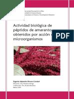 Actividad biológica de péptidos de amaranto obtenidos por acción de microorganismos