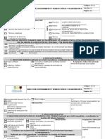 Formato Induccion Entrenamiento y Reinduccion de un sistema de gestion de seguridad y salud en el trabajo